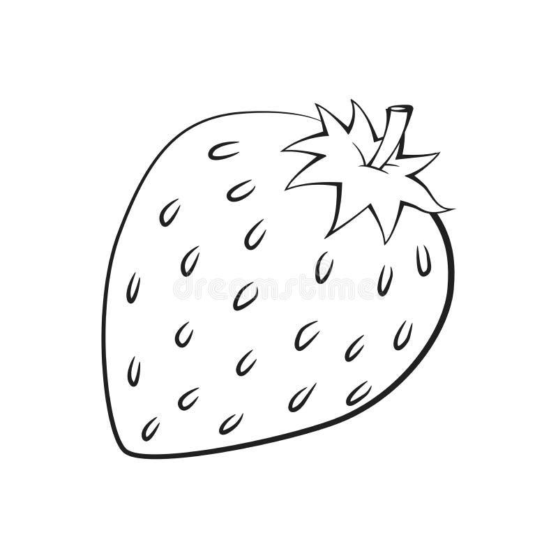 Illustration der Erdbeere, Vektor-Illustration vektor abbildung