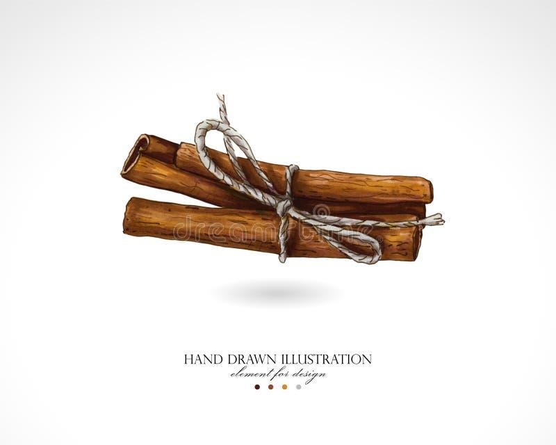 Illustration des bâtons de cannelle dessinés à la main sur un fond blanc illustration libre de droits