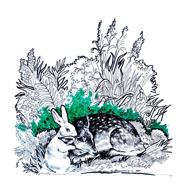 Illustration des cerfs communs et des lièvres dans la forêt photographie stock