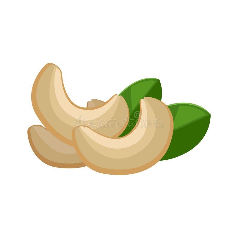 Illustration des noix de cajou illustration libre de droits