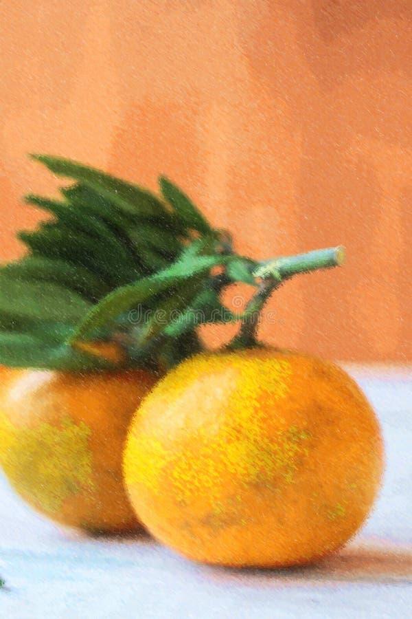 Illustration des paires de la mandarine au-dessus d'un conseil blanc illustration stock