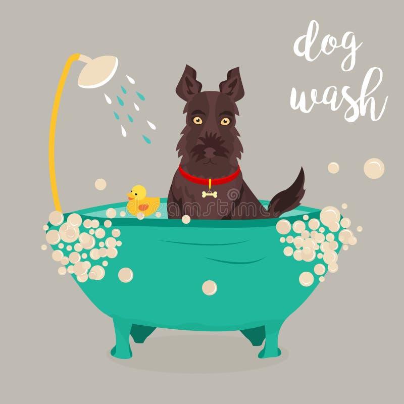 Illustration of a dog taking a shower. vector illustration