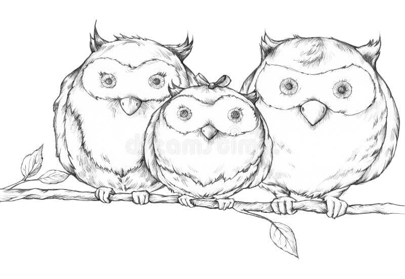 Illustration einer Eulenfamilie lizenzfreie abbildung
