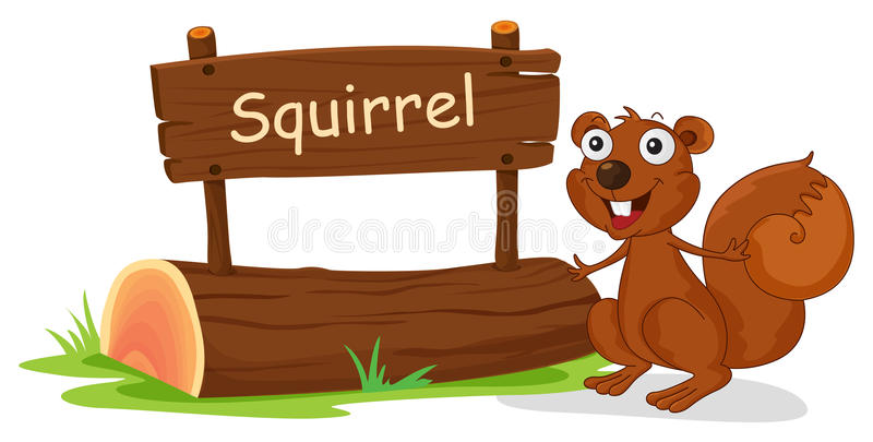 Ein Eichhörnchen neben einem hölzernen Signage vektor abbildung