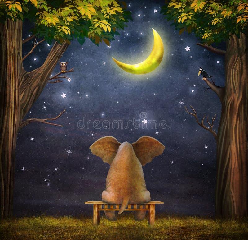 Illustration eines Elefanten auf einer Bank im Nachtwald vektor abbildung