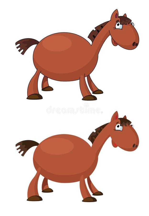 Pferd Lustig Stockbild