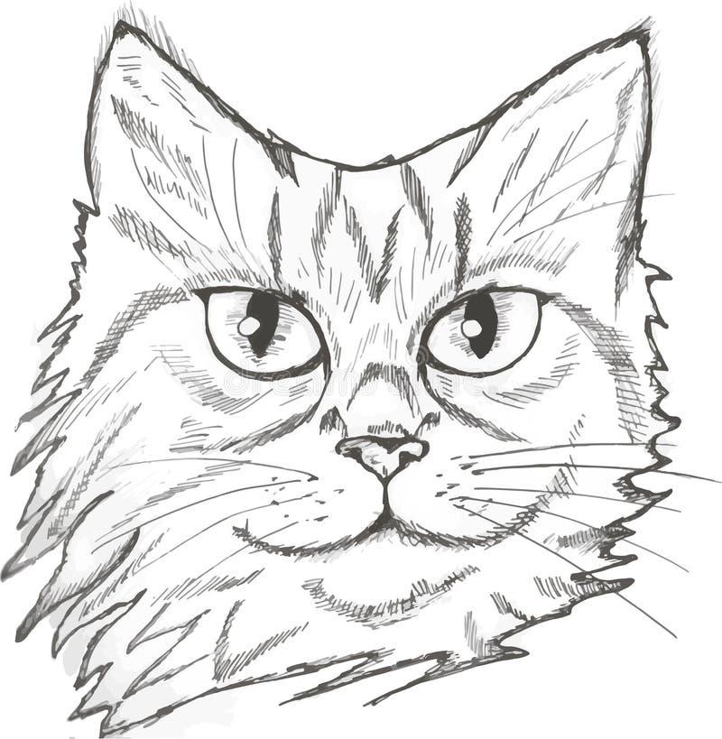 Illustration eines Porträts einer Katze Schön suchen Sie nach einem Haustier stock abbildung