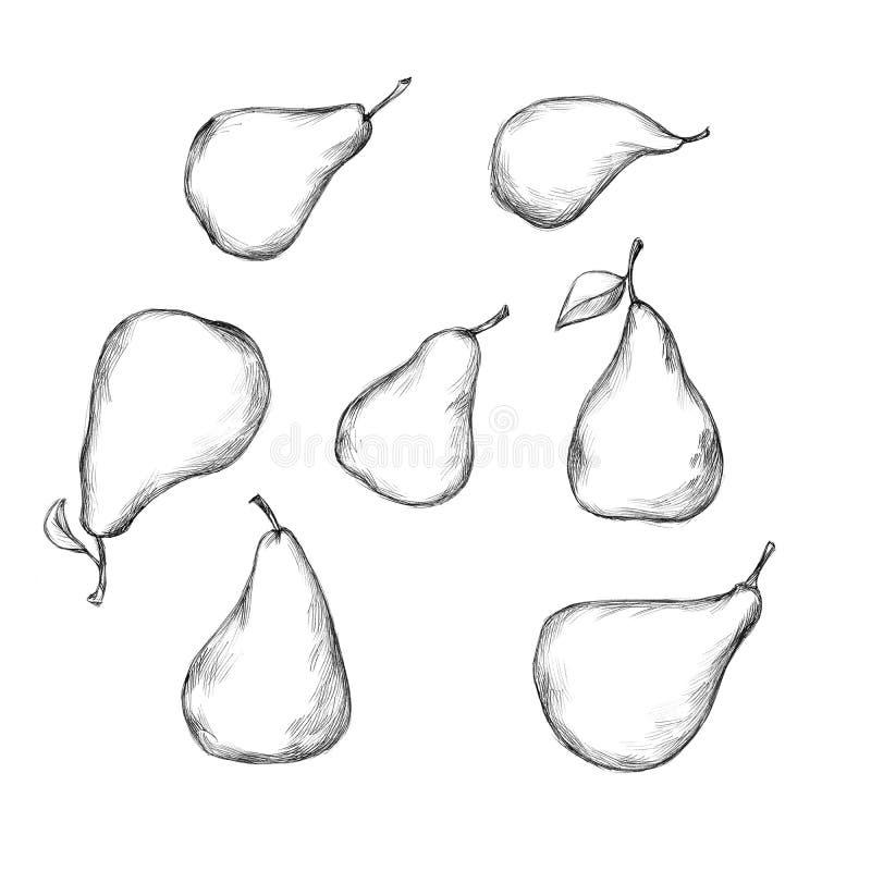 Illustration einiger Birnen in den verschiedenen Größen stock abbildung