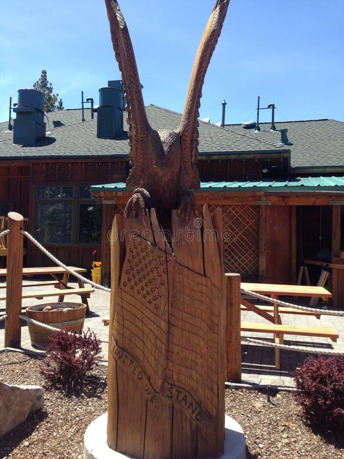 Illustration en bois dans le lac Tahoe la Californie image stock