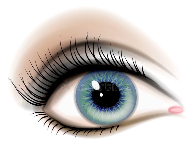 illustration för ögonkvinnlighuman royaltyfri illustrationer