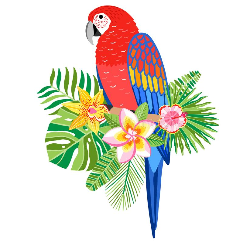 Illustration för arapapegojavektor Tropisk fågel stock illustrationer