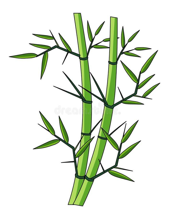 Illustration för bambuträdväljare Bambu lagerför bildvektorn vektor illustrationer