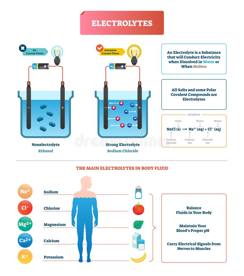 Illustration för elektrolytprovvektor Kroppvätska märkte diagramexempel stock illustrationer