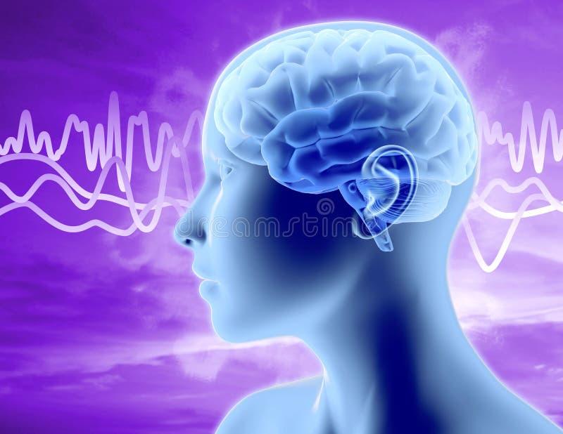 Illustration för hjärnvågor med kvinnahuvudprofil, att tänka och illustrationen för koncentrationsbegrepp 3D vektor illustrationer