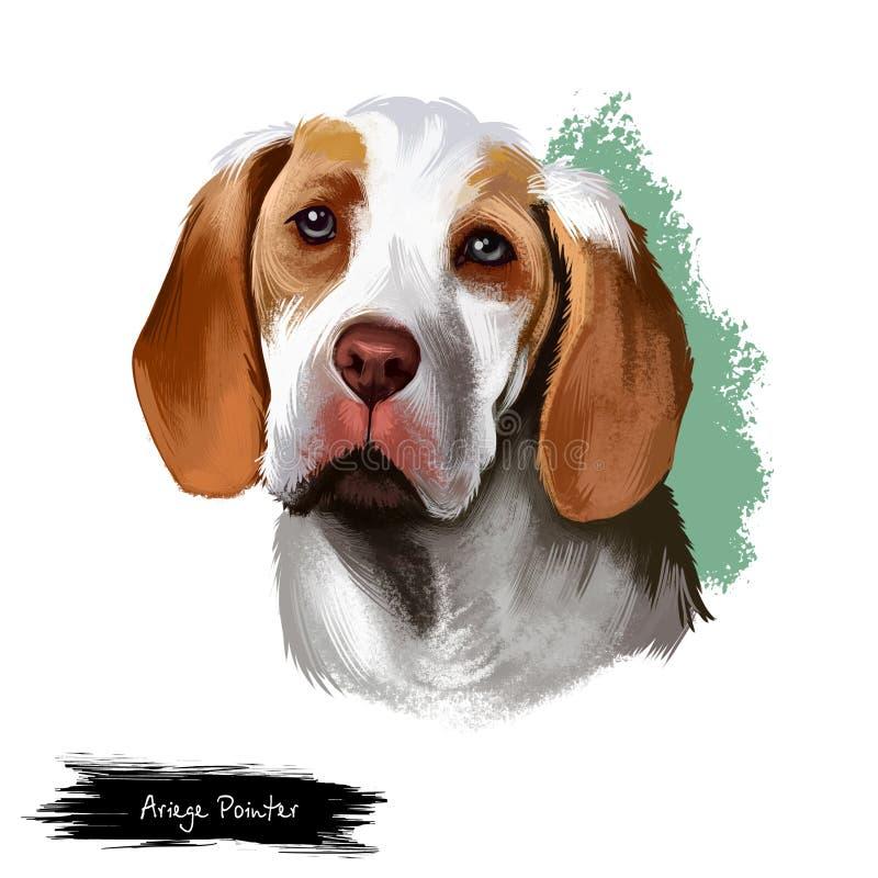 Illustration för konst för Ariege pekarehund som digital isoleras på vit Braque de Ariege Peka hundpekare, avel av hunden, av stock illustrationer
