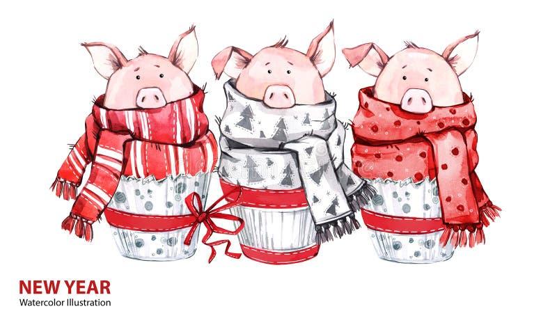 2019 illustration för lyckligt nytt år bakgrundskanten boxes vita guld- isolerade band för julgåvan 3 gulliga svin i vinterscarve vektor illustrationer