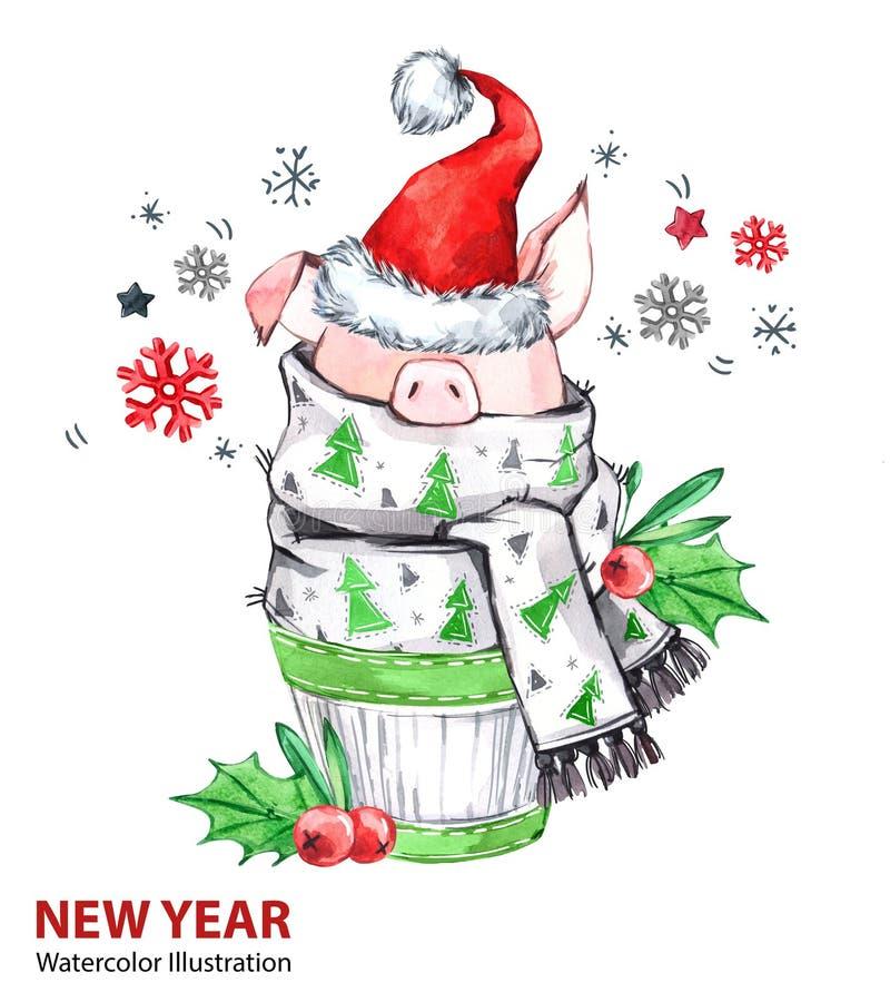 2019 illustration för lyckligt nytt år Jul Gulligt svin i vinterhalsduk med jultomtenhatten Hälsningvattenfärgkaka symbol royaltyfri illustrationer