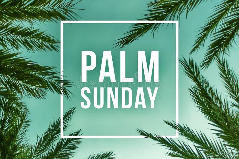 Illustration för palmsöndagferietext stock illustrationer