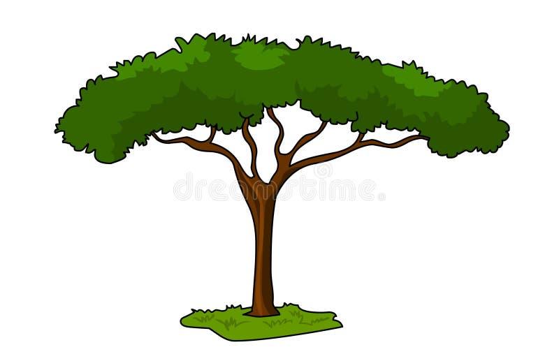 Illustration för paraplyThorn Acacia Tree vektor stock illustrationer