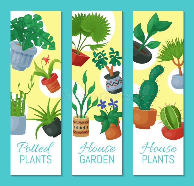 Illustration för vektor för baner för floriculture för husblommor inomhus Arbeta i trädgården för naturhemgarnering Inomhus växte vektor illustrationer