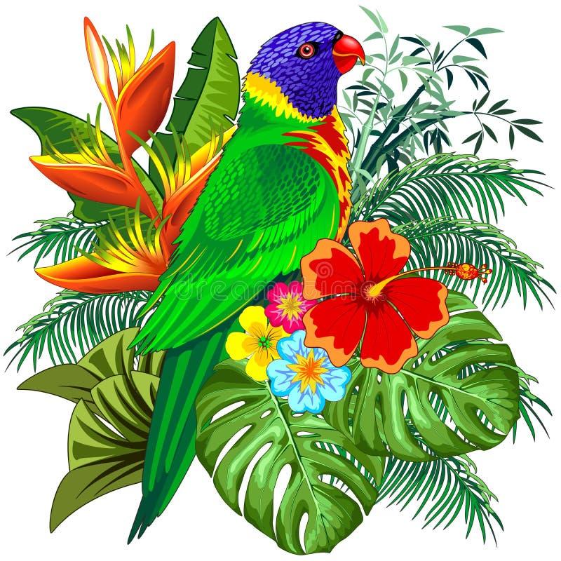 Illustration för vektor för fågel för regnbågeLorikeet exotisk färgrik papegoja stock illustrationer