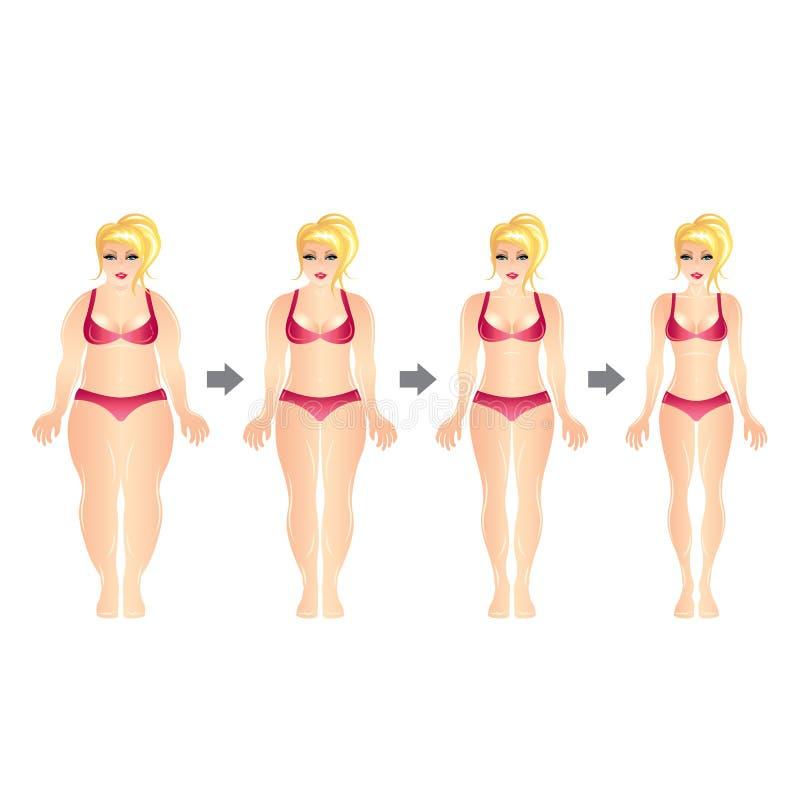 Illustration för vektor för kvinna för viktförlust stock illustrationer