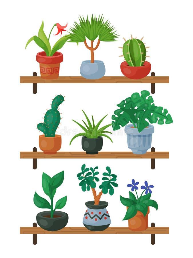 Illustration för vektor för floriculture för husblommahylla inomhus Arbeta i trädgården för naturhemgarnering Inomhus växter in stock illustrationer