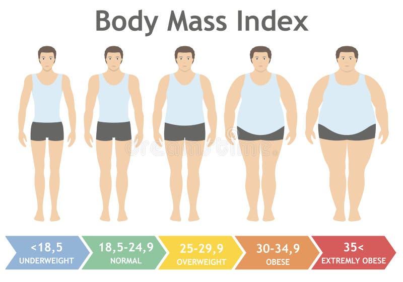 Illustration för vektor för index för kroppmass från underviktigt till extremt sjukligt fett i plan stil Man med olika fetmagrade royaltyfri illustrationer