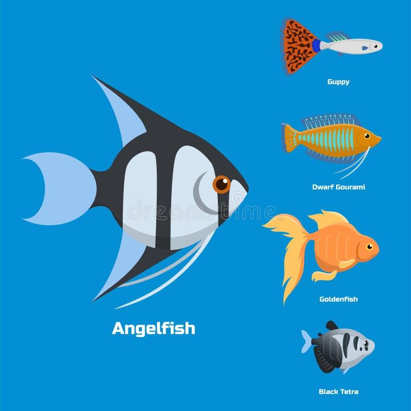 Illustration för vektor för lägenhet för natur för exotisk tropisk för akvariefisk olik för färger undervattens- art för hav vatt royaltyfri illustrationer