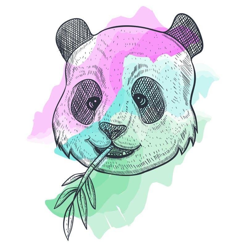 Illustration f?r vektor f?r pandaBAMBUvattenf?rg vektor illustrationer