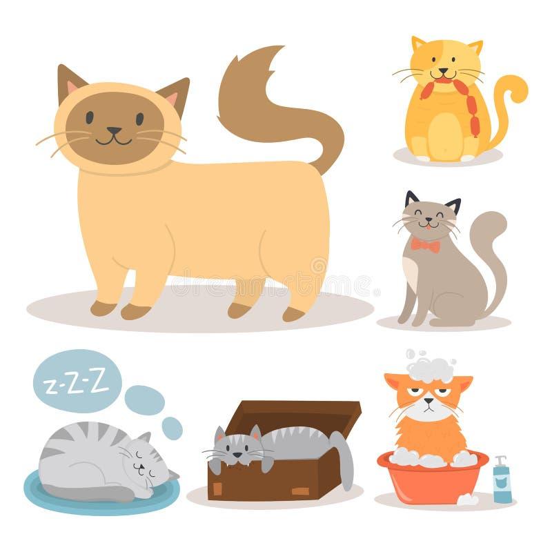 Illustration för vektor för tecken för gullig för kattunge för husdjur för ståendekattdjur fullblods- katt- päls för pott inhemsk royaltyfri illustrationer