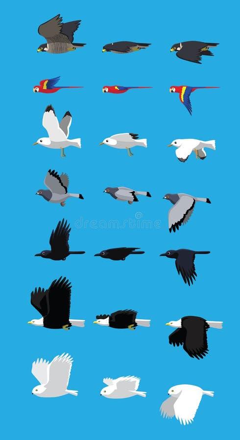 Illustration för vektor för tecknad film för olik fågelflygföljd gullig royaltyfri illustrationer