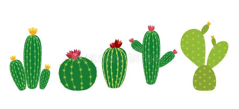 Illustration för vektor för uppsättning för kaktussymbolssamling vektor illustrationer