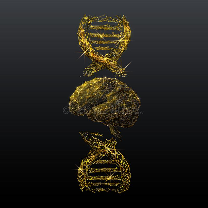 Illustration för wireframe för hjärn- och DNAspiral guld- låg poly royaltyfri illustrationer