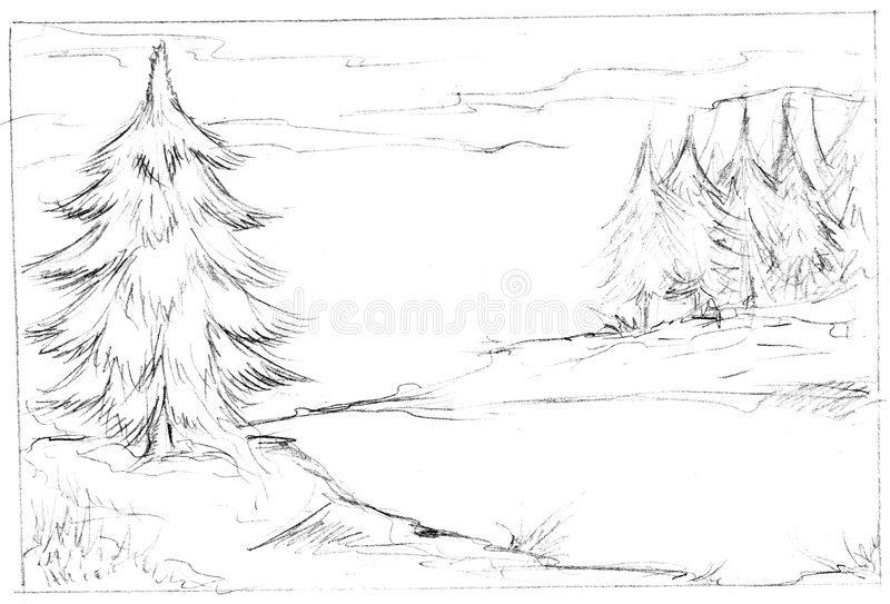 Download Illustration of fir trees stock illustration. Illustration of illustrated - 8606803
