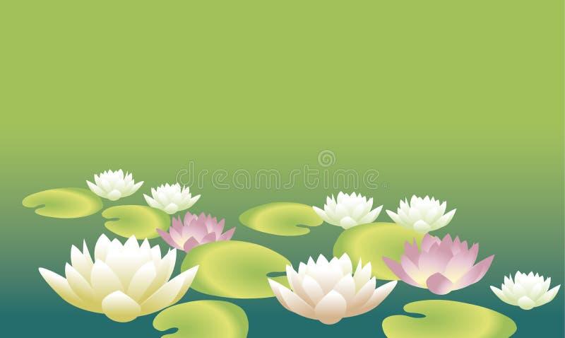 Illustration florale élégante tendre de vecteur de l'eau blanche illustration stock