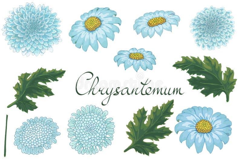 Illustration florale de vecteur avec le chrysanthème illustration de vecteur