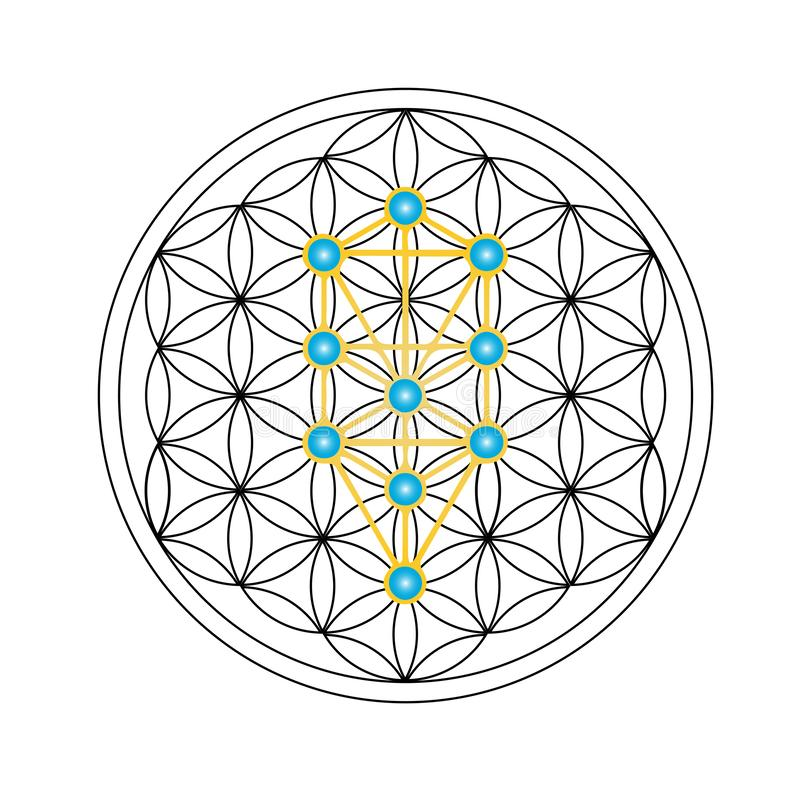 Flower of life with Kabbalah tree of life, Judaism stock illustration