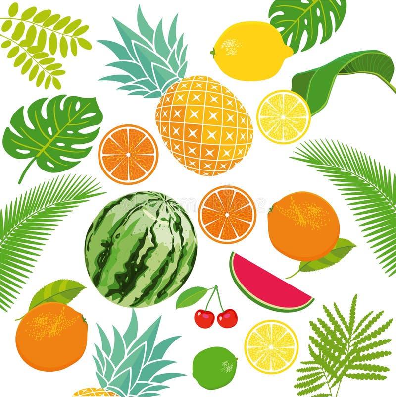 Fresh fruits background royalty free illustration