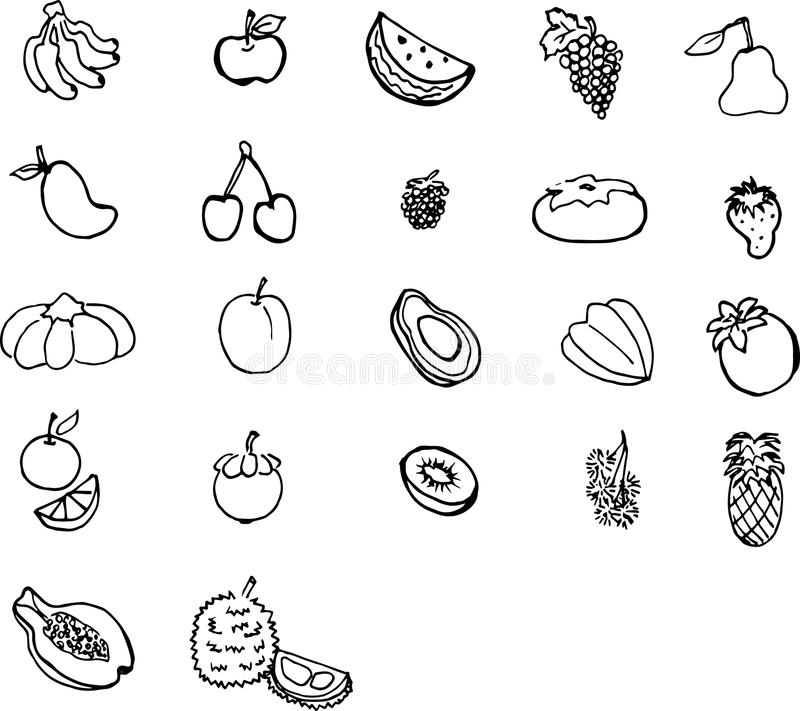 Line Art Fruits : Illustration fruits line art black and white stock