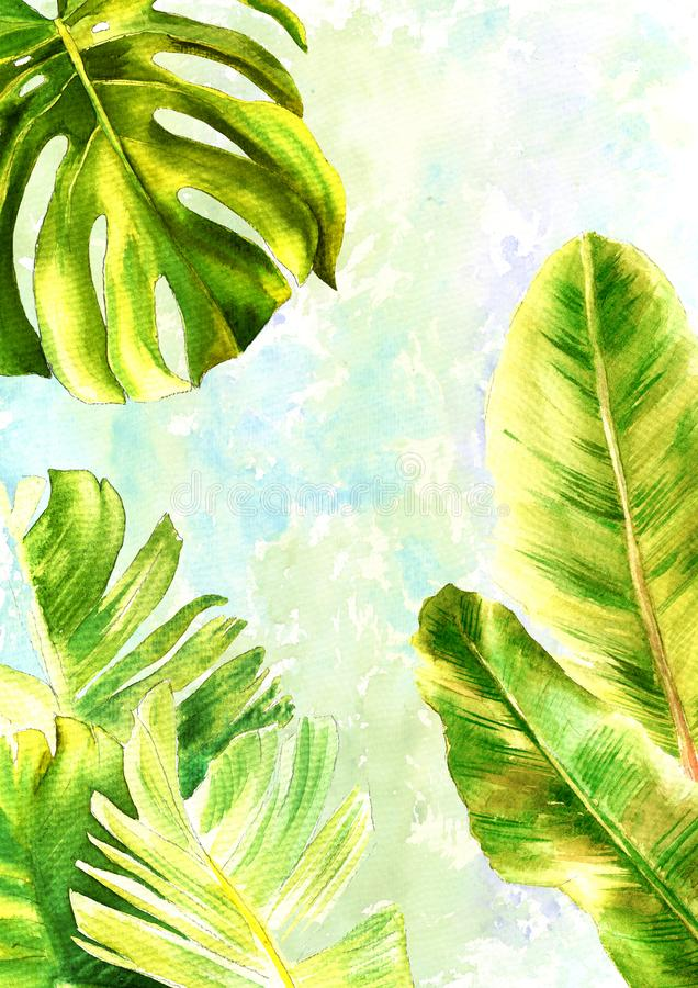 Illustration with a gentle watercolor background: template for your design, cards or invitations. Banana leaves and. Illustration with a gentle watercolor vector illustration
