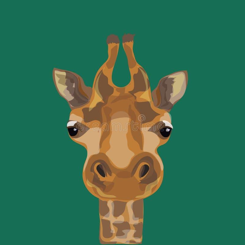 Illustration of a giraffe. The head of the giraffes. vector illustration