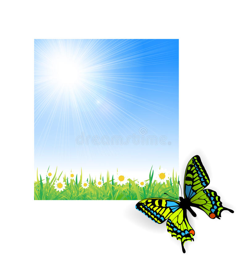 Illustration of green grass with a butterfly vector illustration
