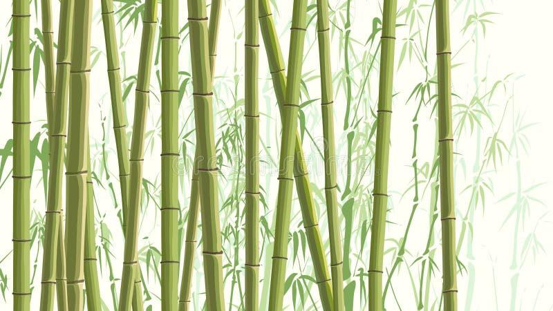 Illustration horizontale avec beaucoup de bambous. illustration libre de droits