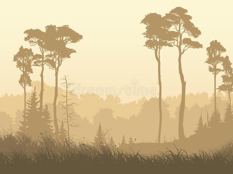 Illustration horizontale de clairière brumeuse de forêt illustration libre de droits
