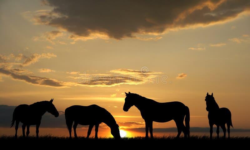 Horses stock illustration