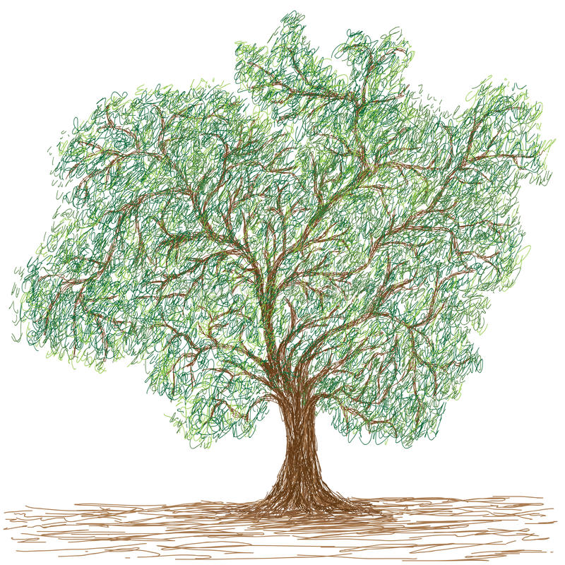 Download Tree stock illustration. Illustration of drawing, colorful - 29950794