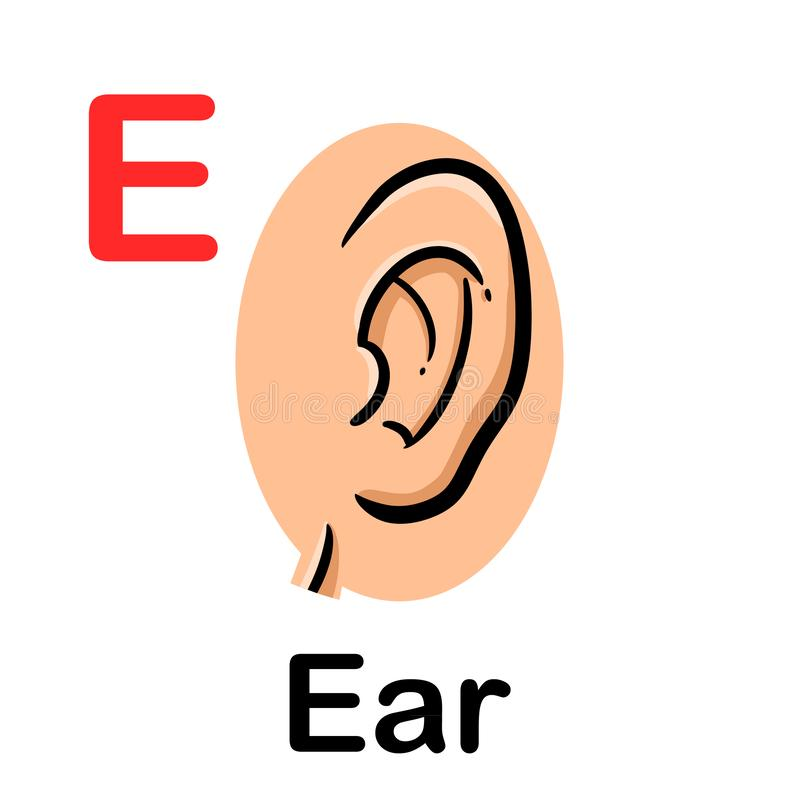 Human ear icon with spelling. Illustration of human ear icon with spelling stock illustration