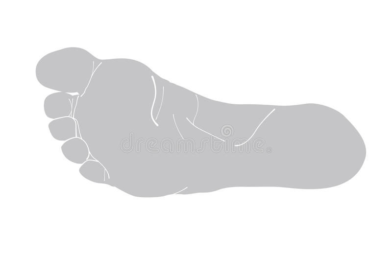 Illustration of human foot silhouette. stock photography