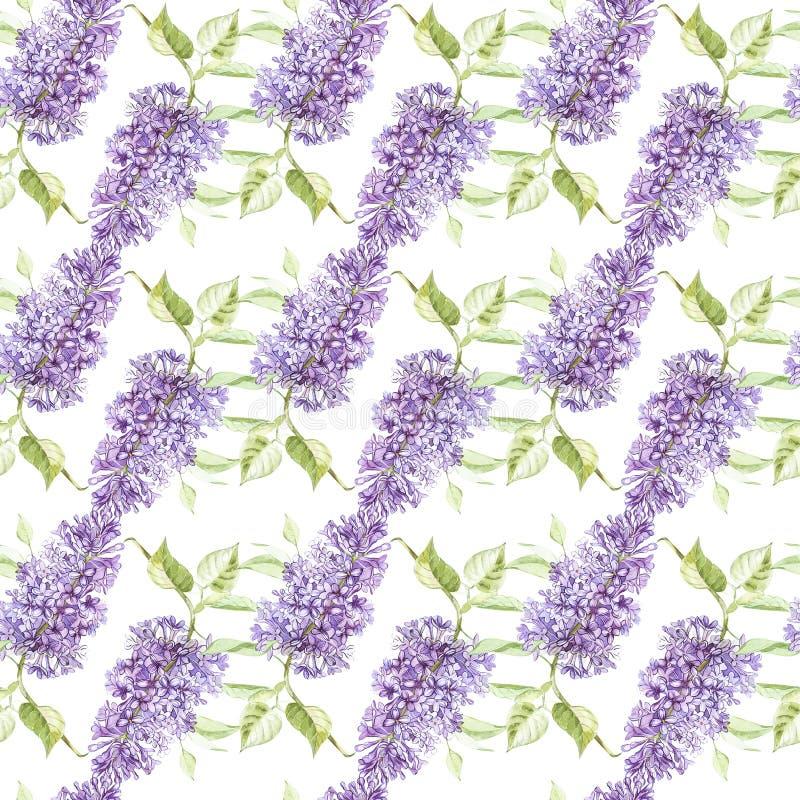 Illustration i vattenfärg av en lila blomma Blom- kort med blommor Sömlös modell för botanisk illustration stock illustrationer